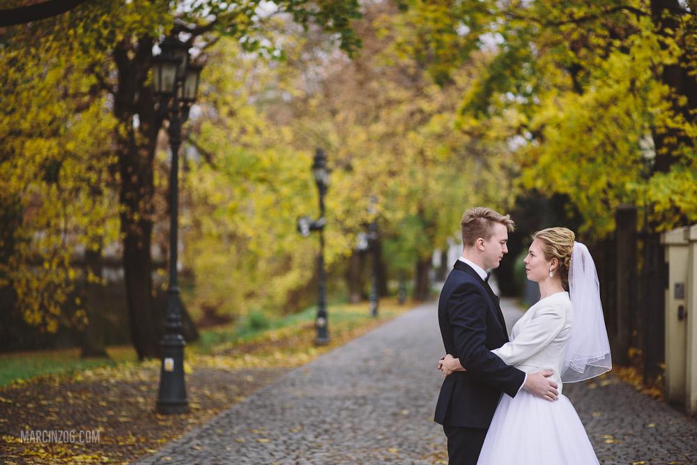 Zdjęcia ślubne Rzeszów - aleja pod Kasztanami